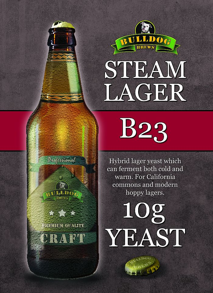 B23 Steam Lager yeast